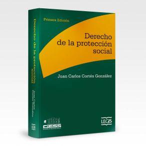 derecho-de-la-proteccion-social_1042-91