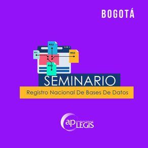 seminario-registro-nacional-de-bases-de-datos_702194-1AP