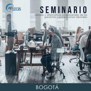 seminario-manejo-y-alternativas-empresariales-de-las-garantias-y-protecciones-laborales_702206-1AP